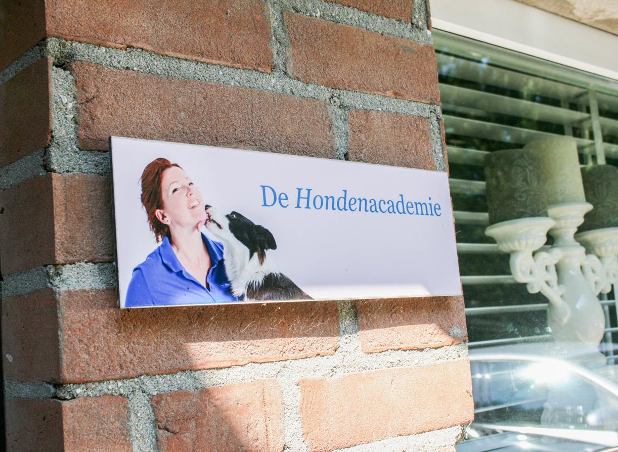 de Hondenacademie_05